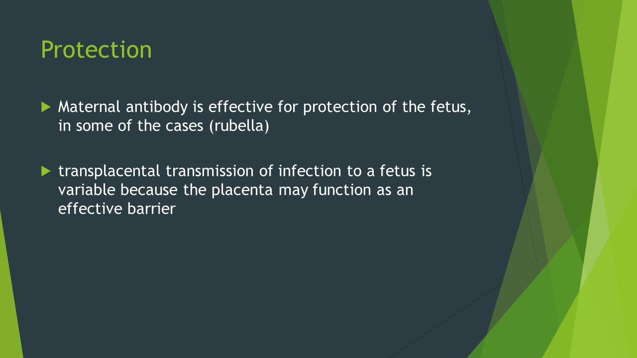 Protection  Maternal antibody is effective for protection of the fetus, in some of the cases (rubella)  transplacental transmission of infection to