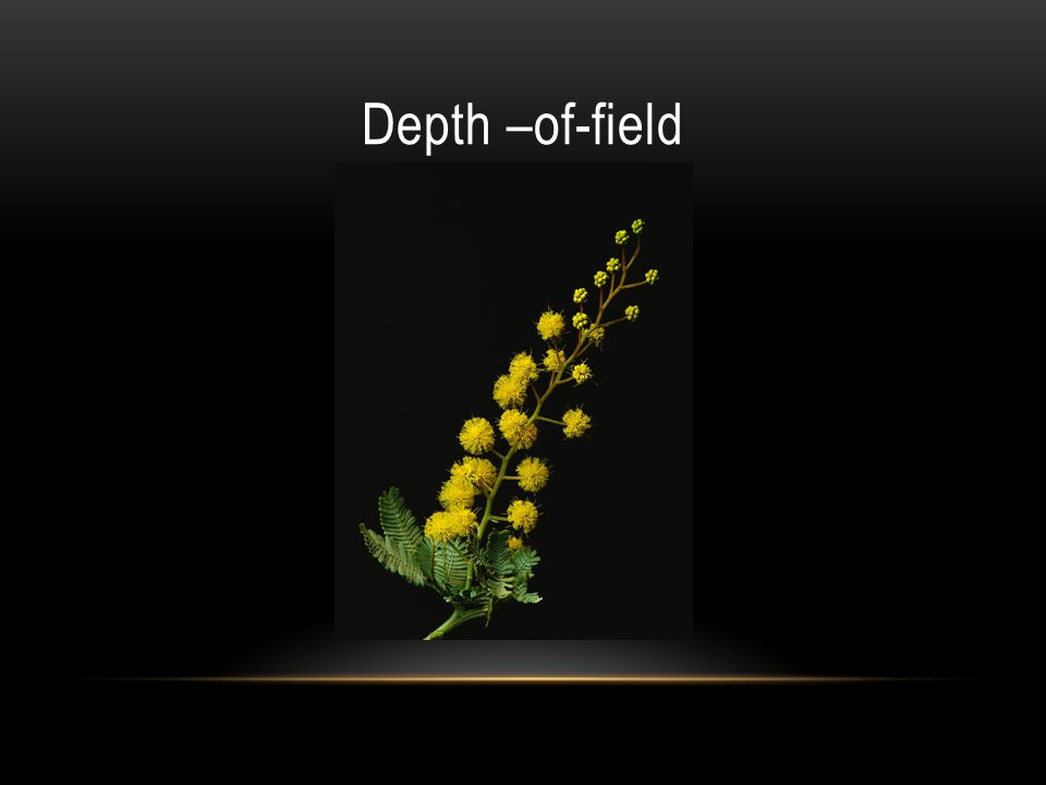 Depth –of-field