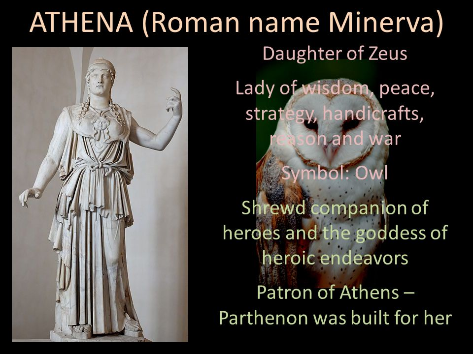 Daughter of Zeus Lady of wisdom, peace, strategy, handicrafts, reason and war Symbol: Owl Shrewd companion of heroes and the goddess of heroic endeavors Patron of Athens – Parthenon was built for her ATHENA (Roman name Minerva)