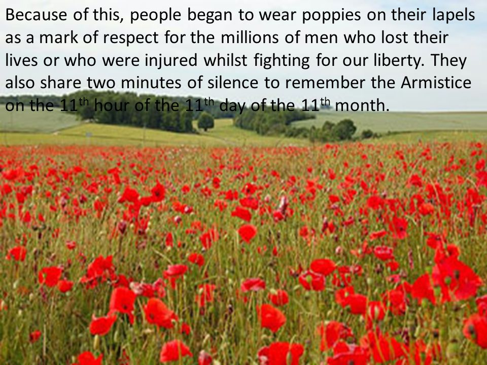 Because of this, people began to wear poppies on their lapels as a mark of respect for the millions of men who lost their lives or who were injured whilst fighting for our liberty.