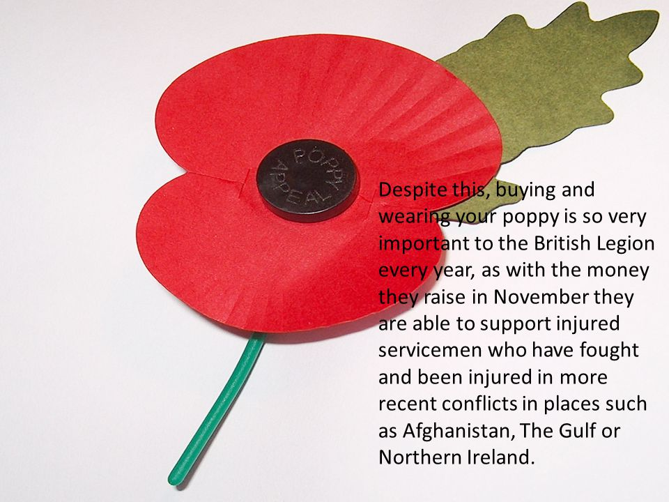 Despite this, buying and wearing your poppy is so very important to the British Legion every year, as with the money they raise in November they are able to support injured servicemen who have fought and been injured in more recent conflicts in places such as Afghanistan, The Gulf or Northern Ireland.