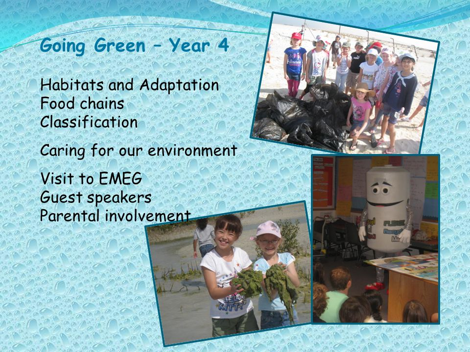 Going Green – Year 4 Habitats and Adaptation Food chains Classification Caring for our environment Visit to EMEG Guest speakers Parental involvement