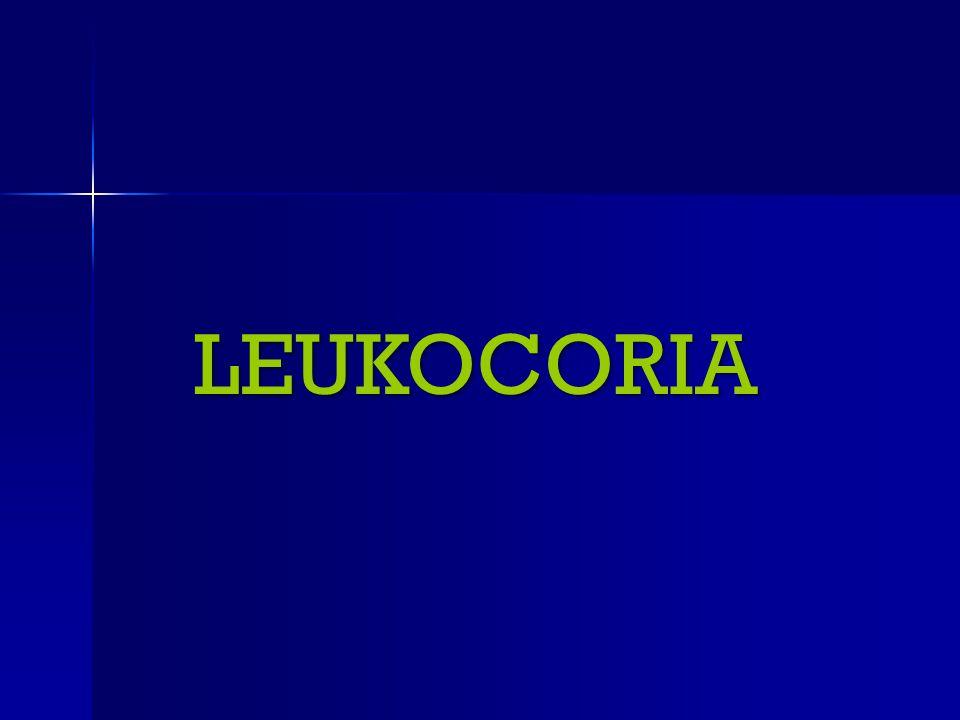 LEUKOCORIA