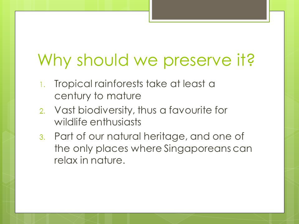 Why should we preserve it. 1. Tropical rainforests take at least a century to mature 2.