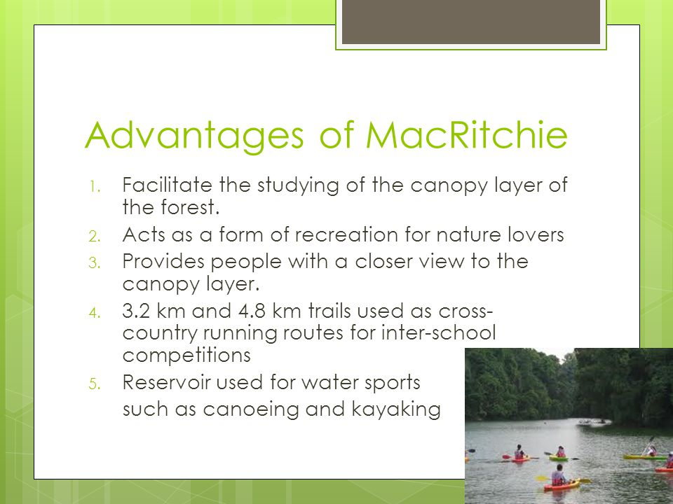 Advantages of MacRitchie 1. Facilitate the studying of the canopy layer of the forest.