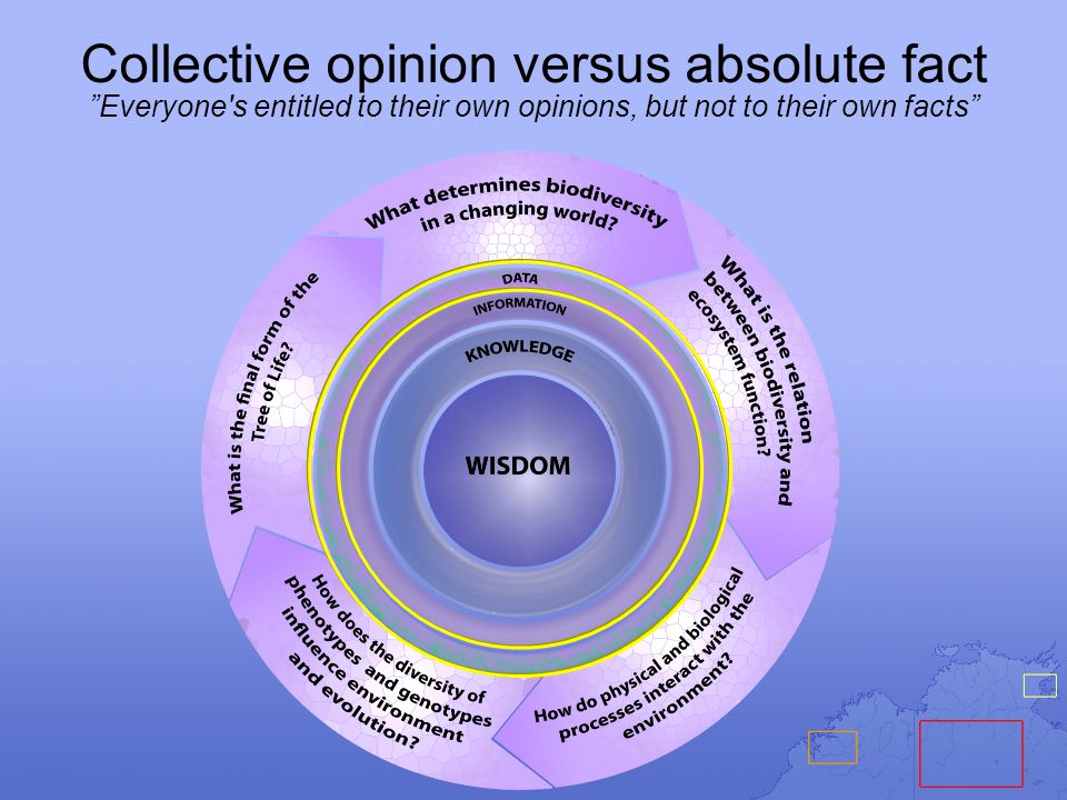 """Collective opinion versus absolute fact """"Everyone's entitled to their own opinions, but not to their own facts"""""""