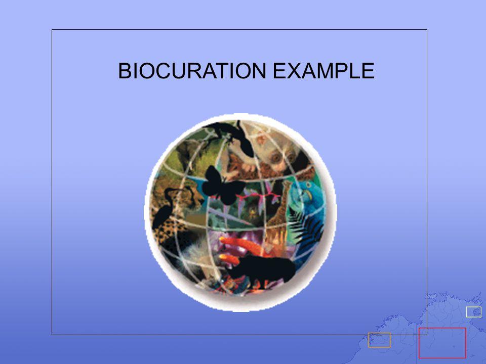 BIOCURATION EXAMPLE