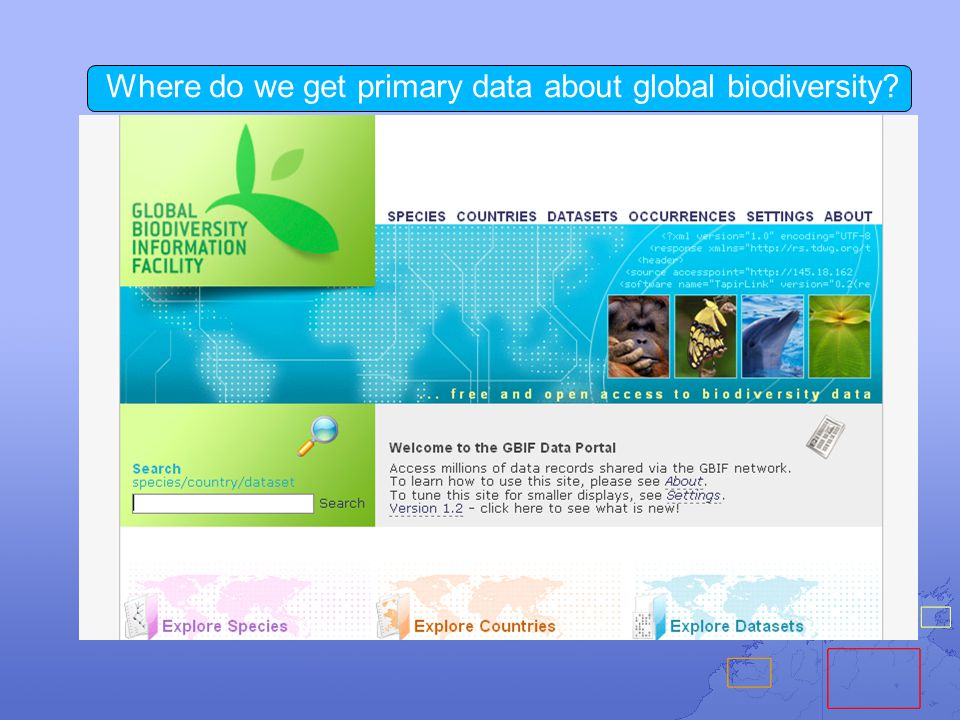 Where do we get primary data about global biodiversity