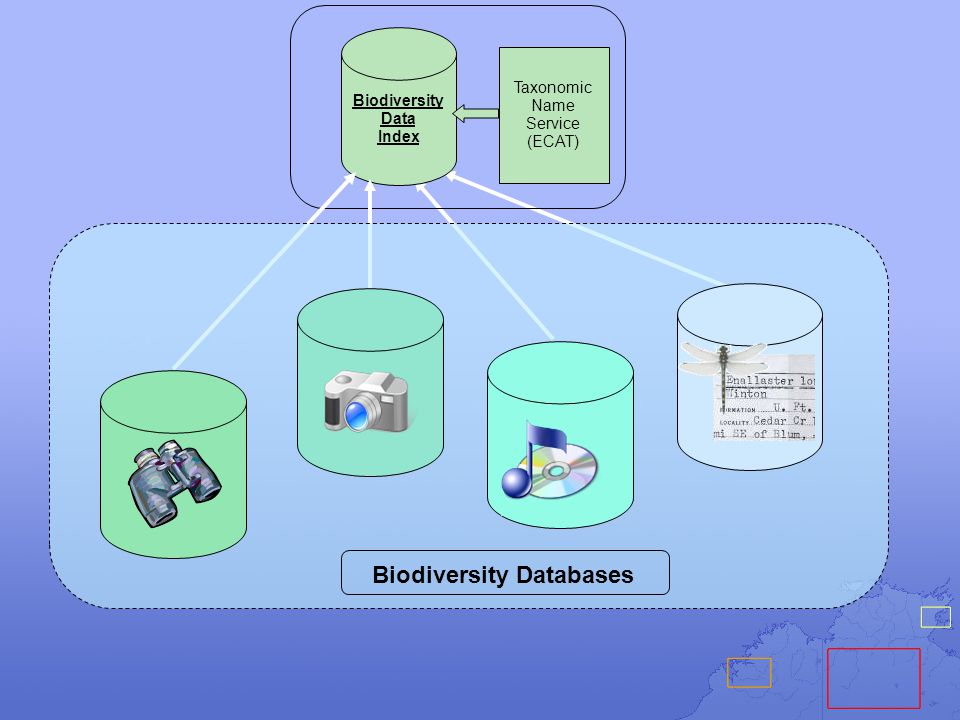 THE PRESENT - FROM VIRUSES TO WHALES PORTALS LIKE GBIF HELP PROVIDERS DISTRIBUTE BIODIVERSITY OCCURRENCE DATA AT ALL SPATIAL, TEMPORAL, TAXONOMIC SCALES