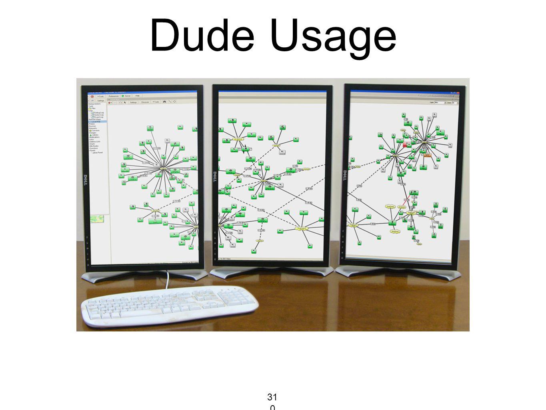 Dude Usage 310