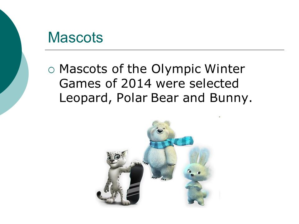 Mascots  Mascots of the Olympic Winter Games of 2014 were selected Leopard, Polar Bear and Bunny.