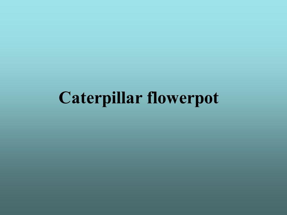 Caterpillar flowerpot