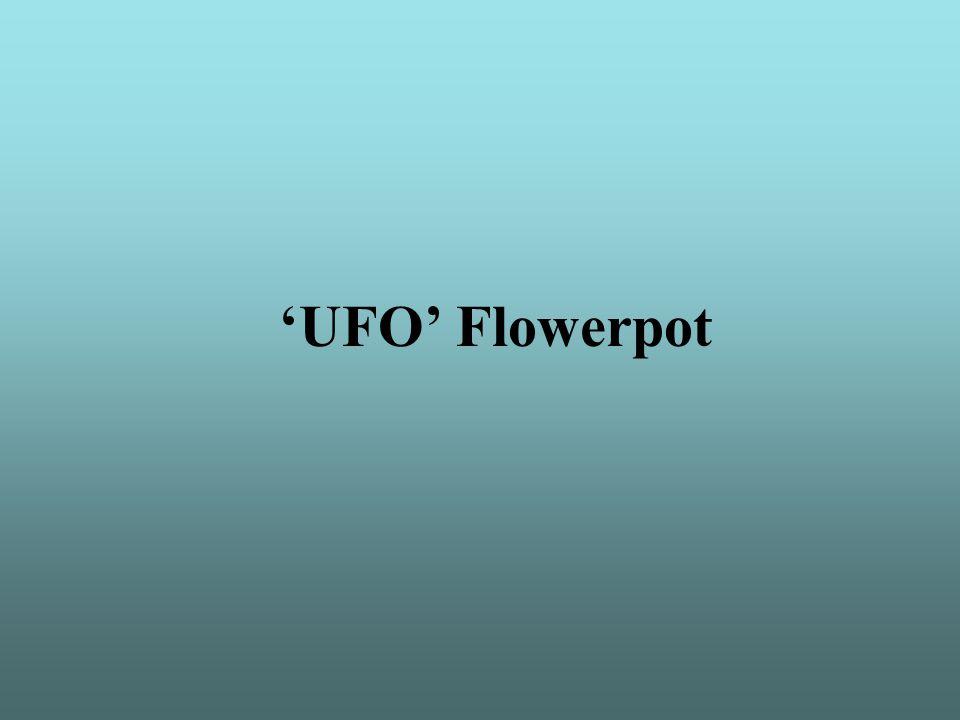'UFO' Flowerpot