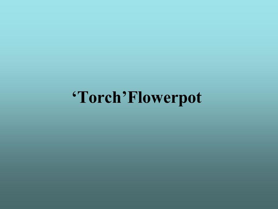 'Torch'Flowerpot