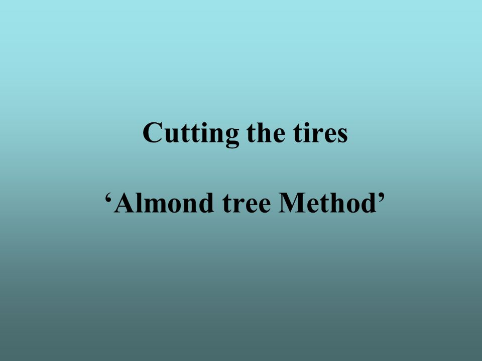 Cutting the tires 'Almond tree Method'
