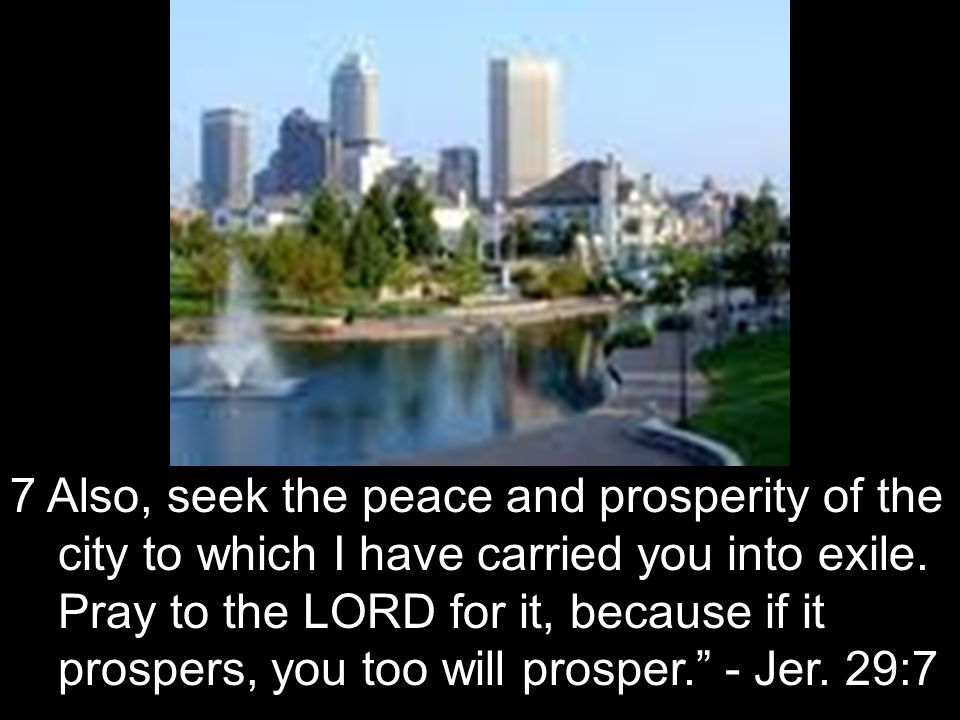 7 Also, seek the peace and prosperity of the city to which I have carried you into exile.