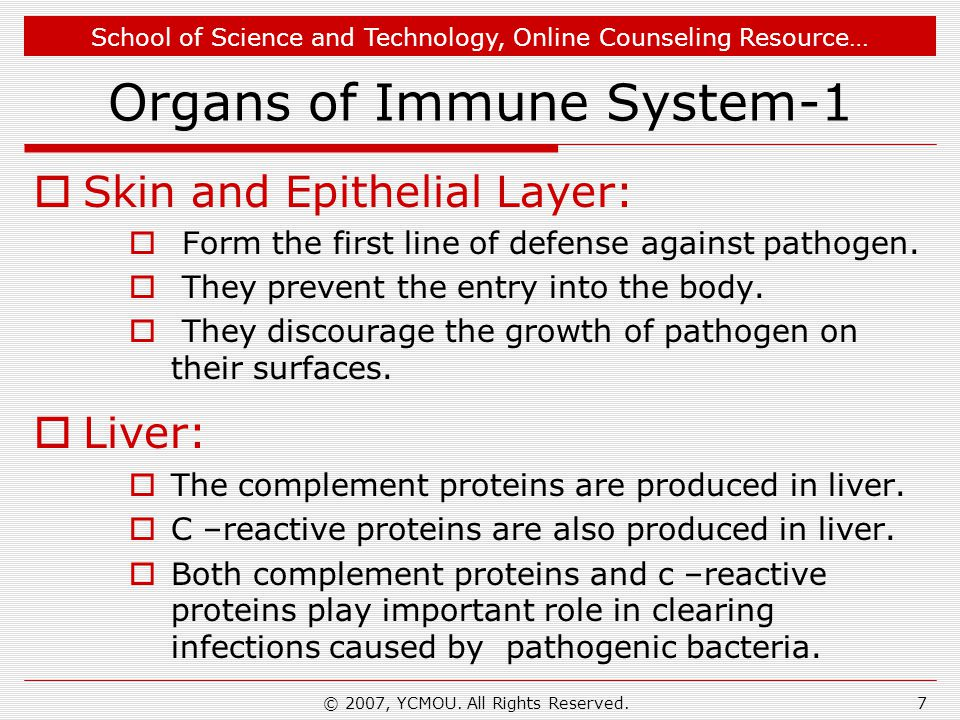 School of Science and Technology, Online Counseling Resource… © 2007, YCMOU. All Rights Reserved.7 Organs of Immune System-1  Skin and Epithelial Lay