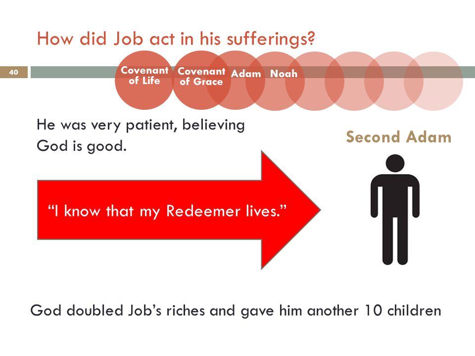 How did Job act in his sufferings. 40 He was very patient, believing God is good.