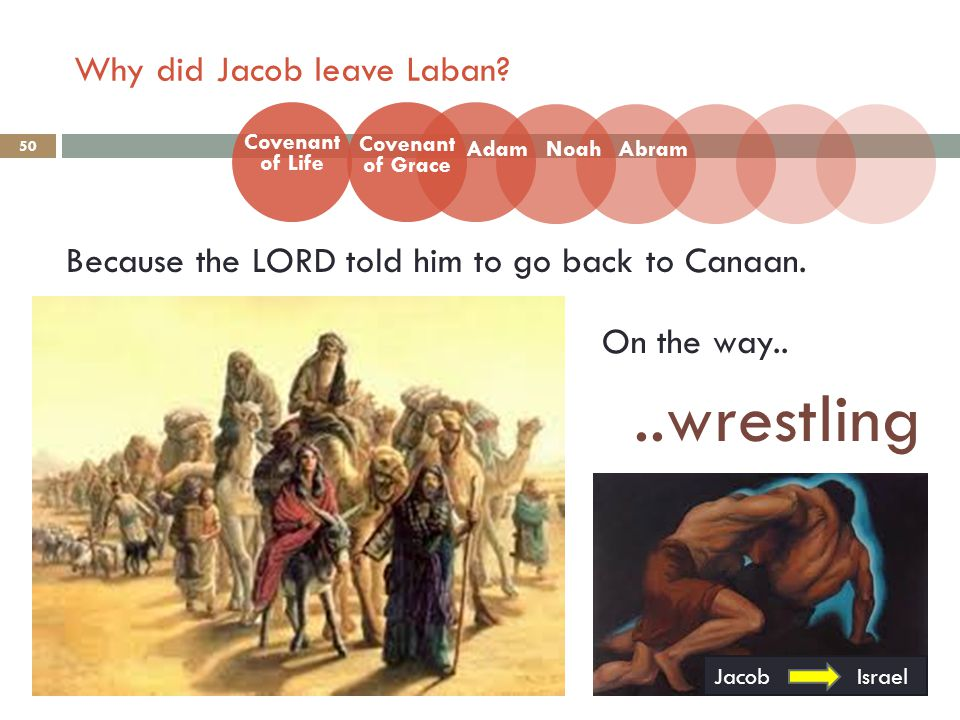 Why did Jacob leave Laban. 50 Because the LORD told him to go back to Canaan.