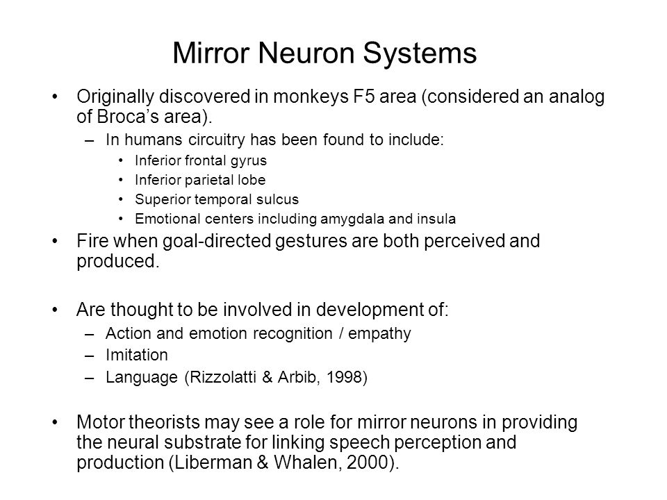 Mirror Neuron Systems Originally discovered in monkeys F5 area (considered an analog of Broca's area).