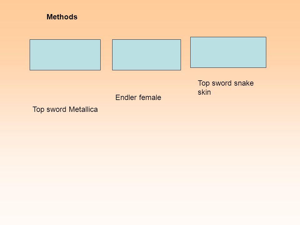 Top sword Metallica Endler female Top sword snake skin Methods