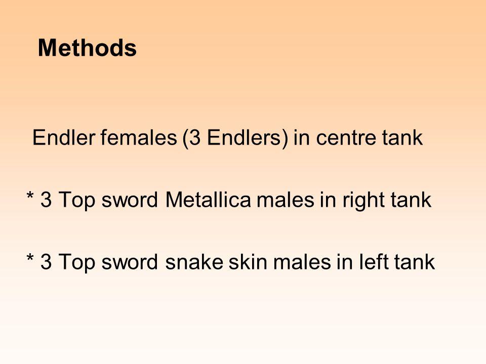 Methods Endler females (3 Endlers) in centre tank * 3 Top sword Metallica males in right tank * 3 Top sword snake skin males in left tank