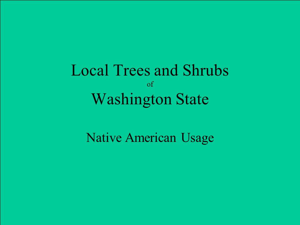 Local Trees and Shrubs of Washington State Native American Usage