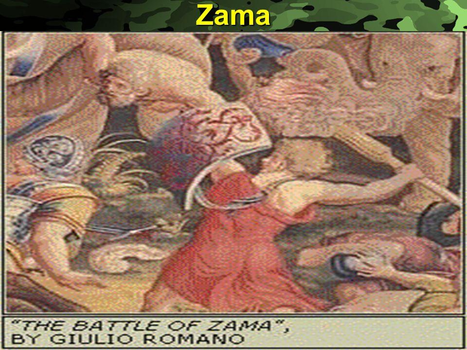 Slide 26Zama