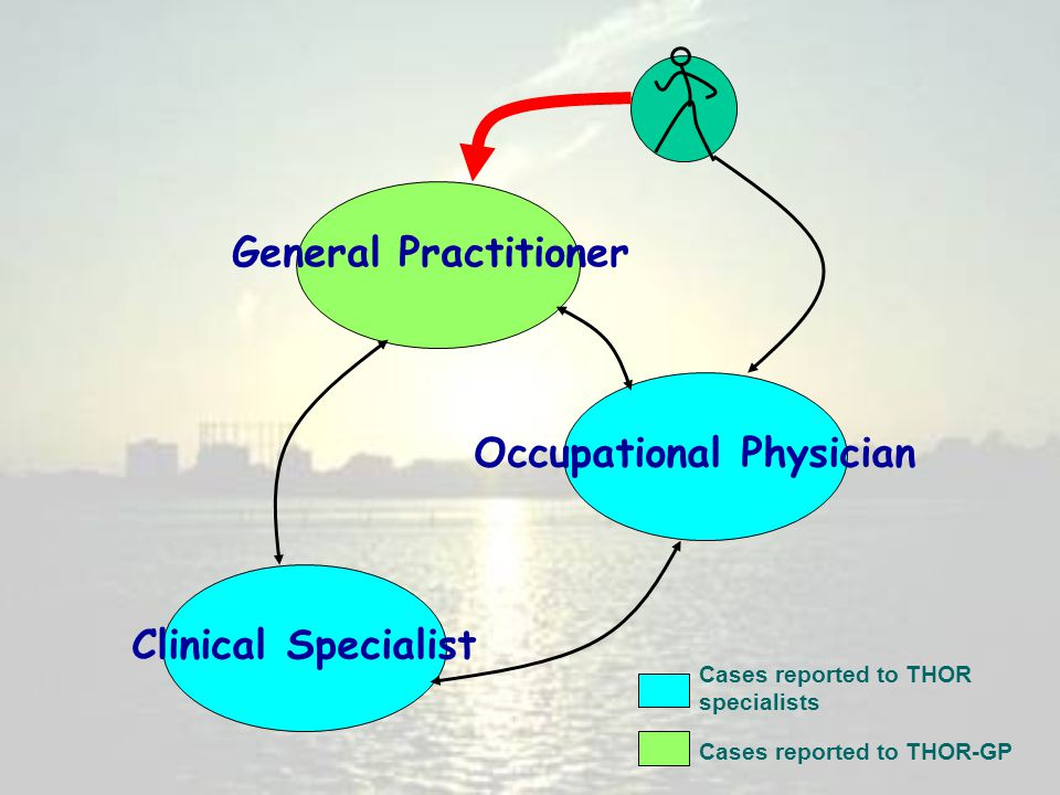 General Practitioner Clinical Specialist Occupational Physician Cases reported to THOR specialists Cases reported to THOR-GP