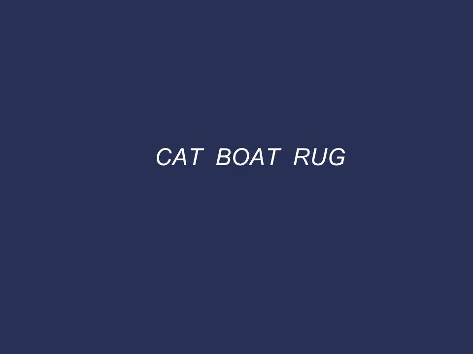 CAT BOAT RUG