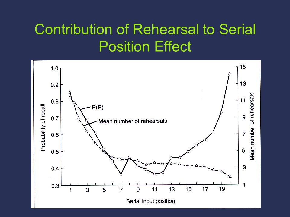 Contribution of Rehearsal to Serial Position Effect