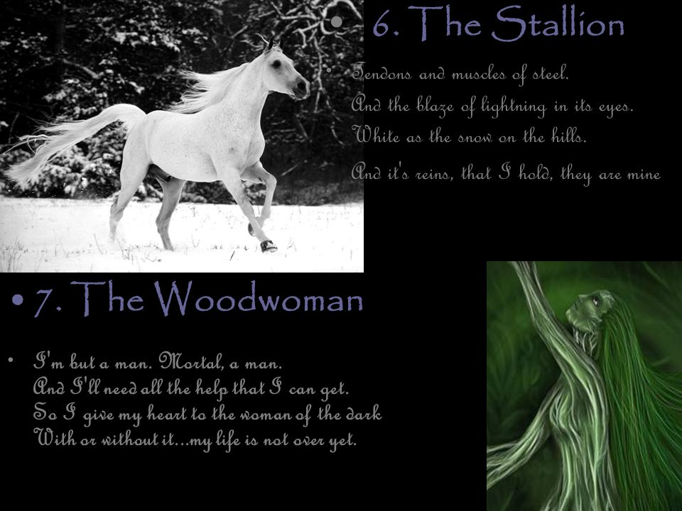 6. The Stallion Tendons and muscles of steel. And the blaze of lightning in its eyes.