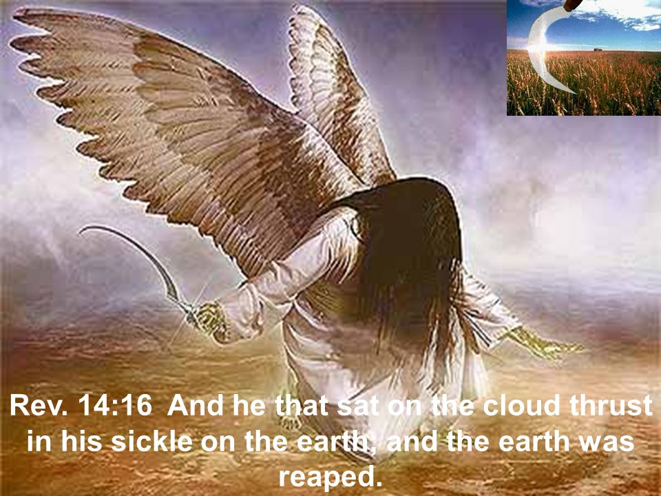 Rev. 14:16 And he that sat on the cloud thrust in his sickle on the earth; and the earth was reaped.