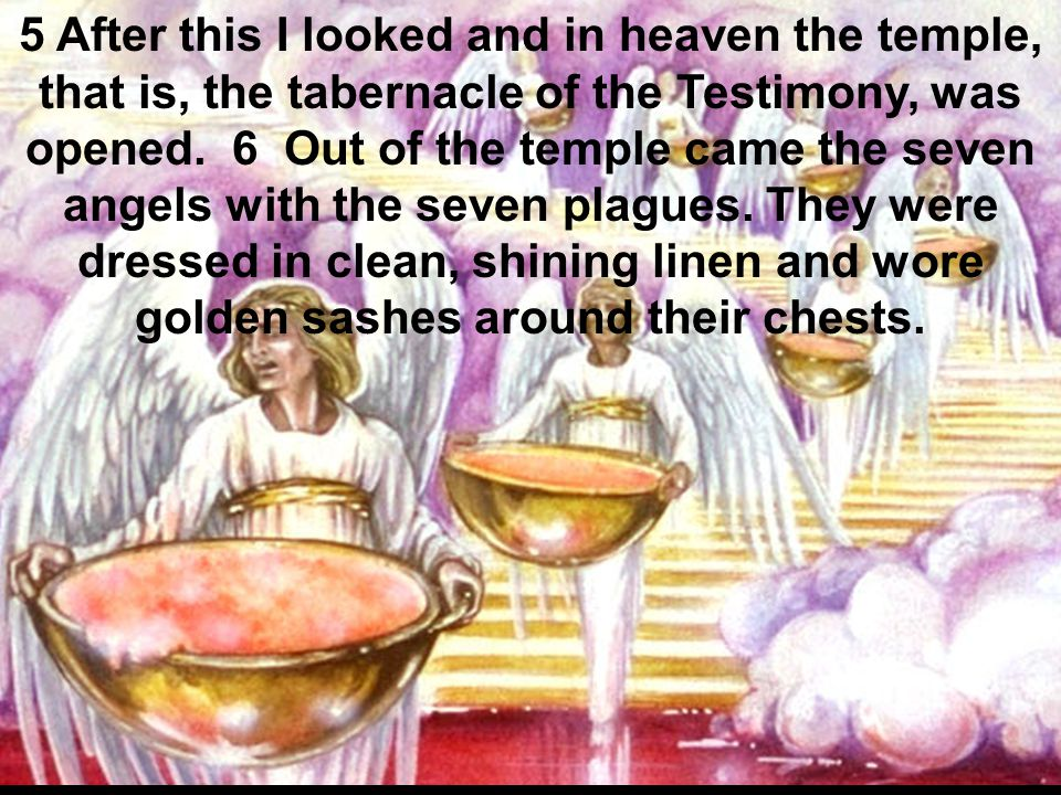 5 After this I looked and in heaven the temple, that is, the tabernacle of the Testimony, was opened. 6 Out of the temple came the seven angels with t