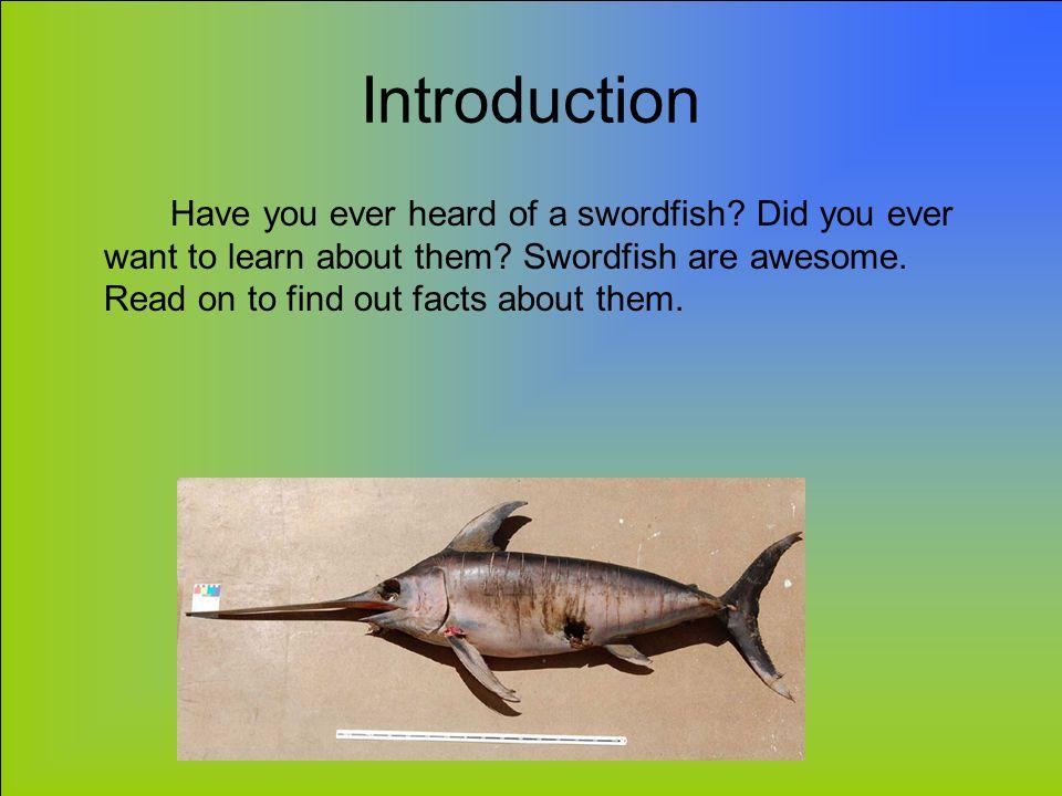 Swordfish Animal Report By Elizabeth Hurst