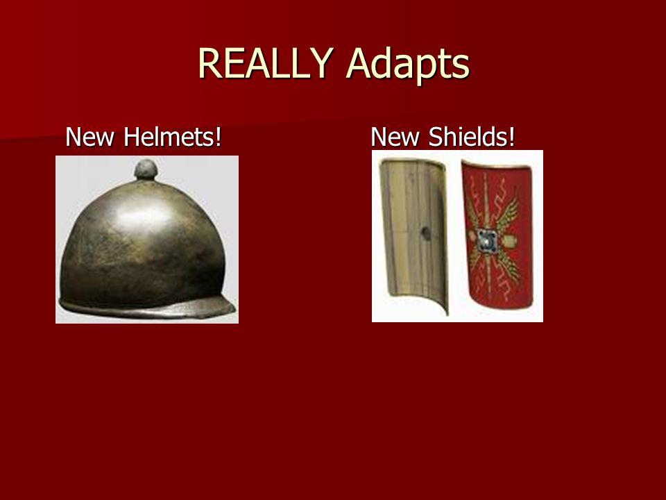 REALLY Adapts New Helmets! New Shields!
