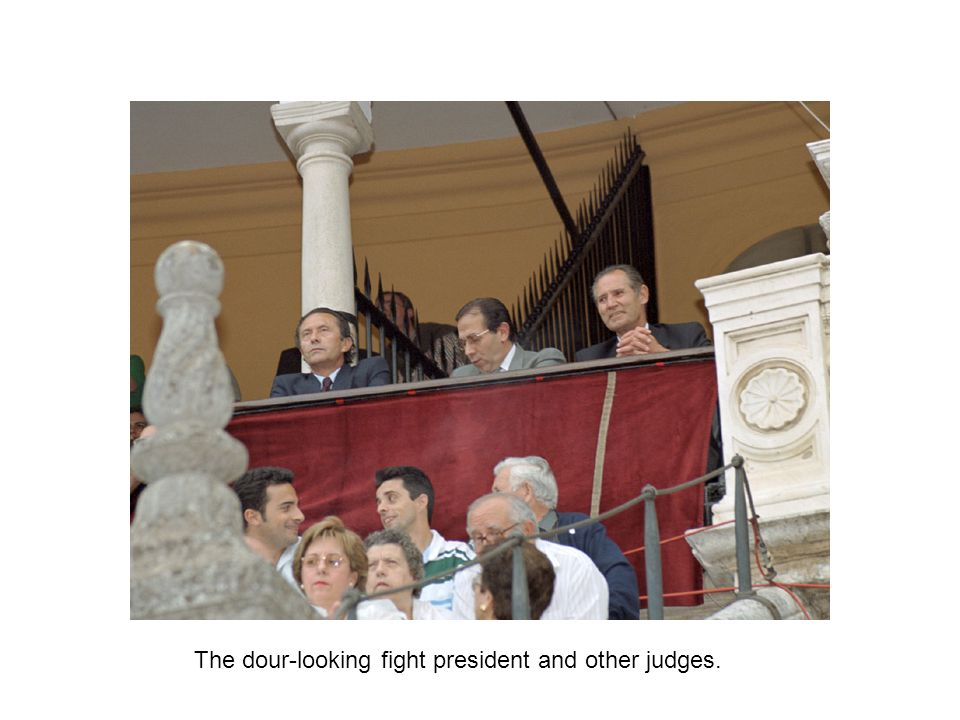 The dour-looking fight president and other judges.