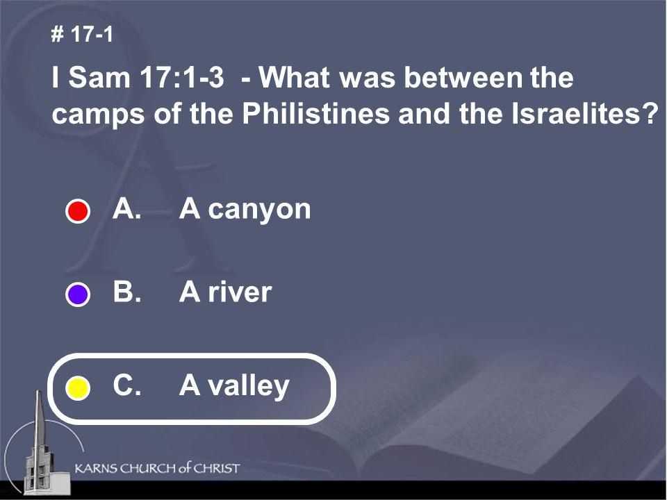 A. A canyon B. A river C.