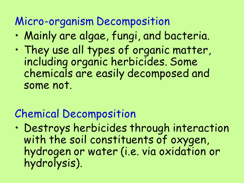 Micro-organism Decomposition Mainly are algae, fungi, and bacteria.