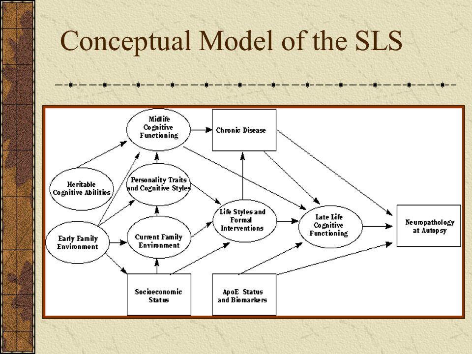 Conceptual Model of the SLS