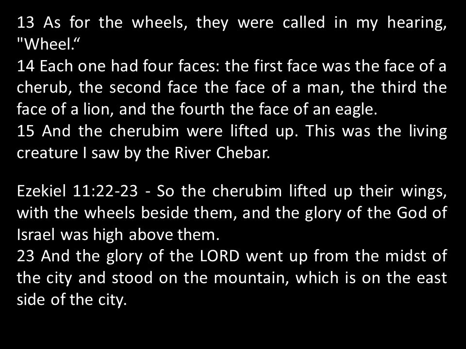 13 As for the wheels, they were called in my hearing, Wheel. 14 Each one had four faces: the first face was the face of a cherub, the second face the face of a man, the third the face of a lion, and the fourth the face of an eagle.