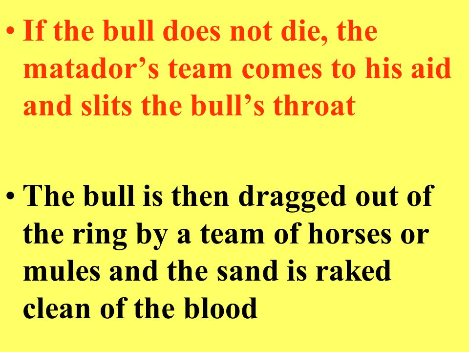 If the bull does not die, the matador's team comes to his aid and slits the bull's throat The bull is then dragged out of the ring by a team of horses or mules and the sand is raked clean of the blood