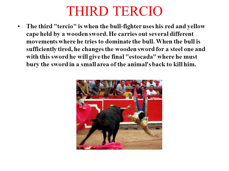 THIRD TERCIO The third tercio is when the bull-fighter uses his red and yellow cape held by a wooden sword.