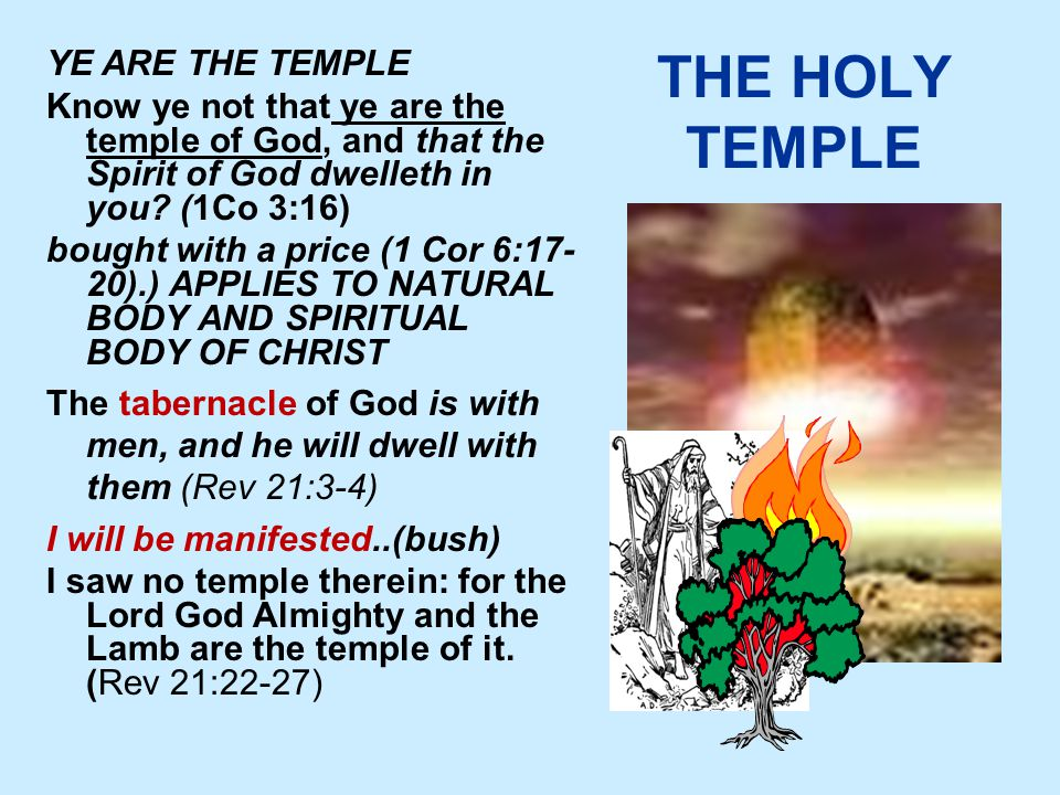 THE HOLY TEMPLE YE ARE THE TEMPLE Know ye not that ye are the temple of God, and that the Spirit of God dwelleth in you.
