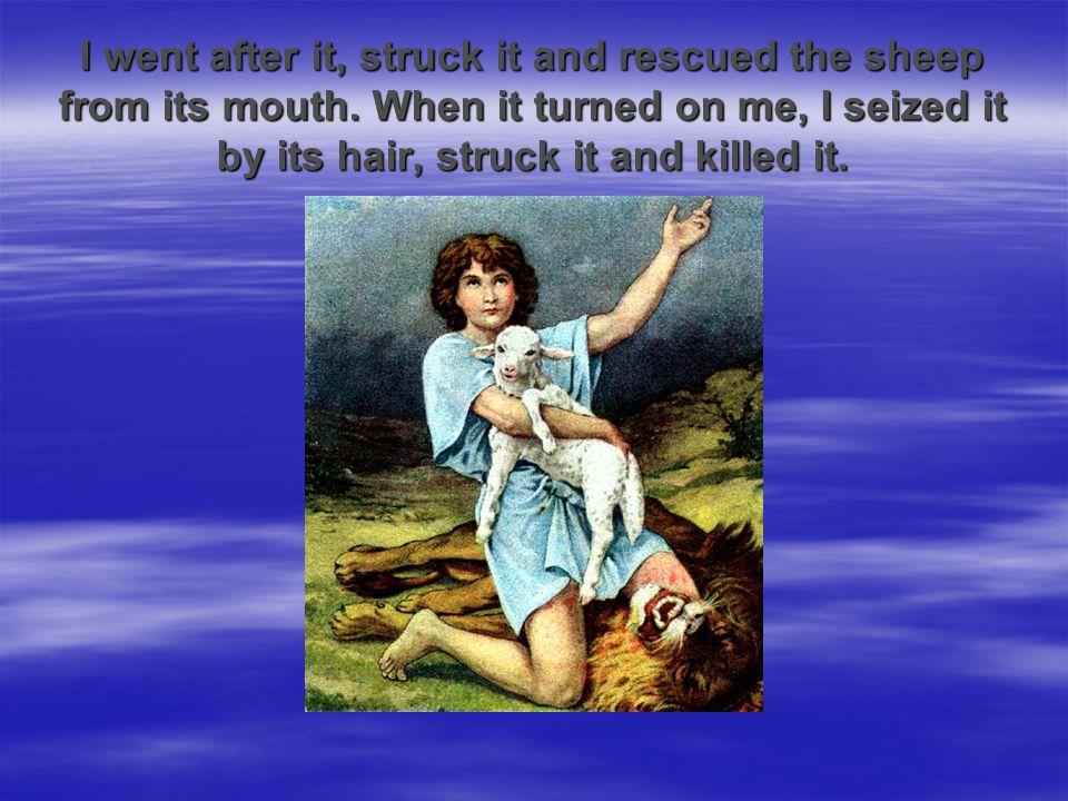 But David said to Saul,