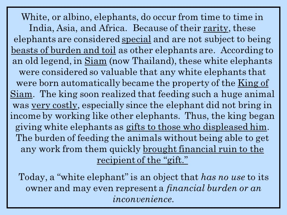 White, or albino, elephants, do occur from time to time in India, Asia, and Africa.