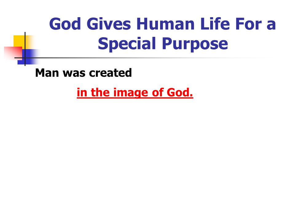 God Gives Human Life For a Special Purpose Man was created in the image of God.