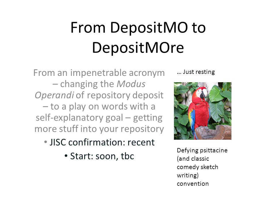 From DepositMO to DepositMOre Defying psittacine (and classic comedy sketch writing) convention … Just resting From an impenetrable acronym – changing the Modus Operandi of repository deposit – to a play on words with a self-explanatory goal – getting more stuff into your repository JISC confirmation: recent Start: soon, tbc