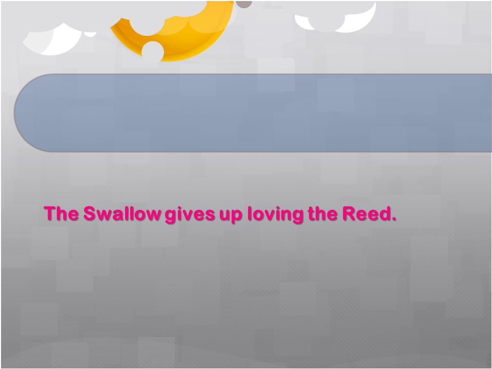 The Swallow gives up loving the Reed.