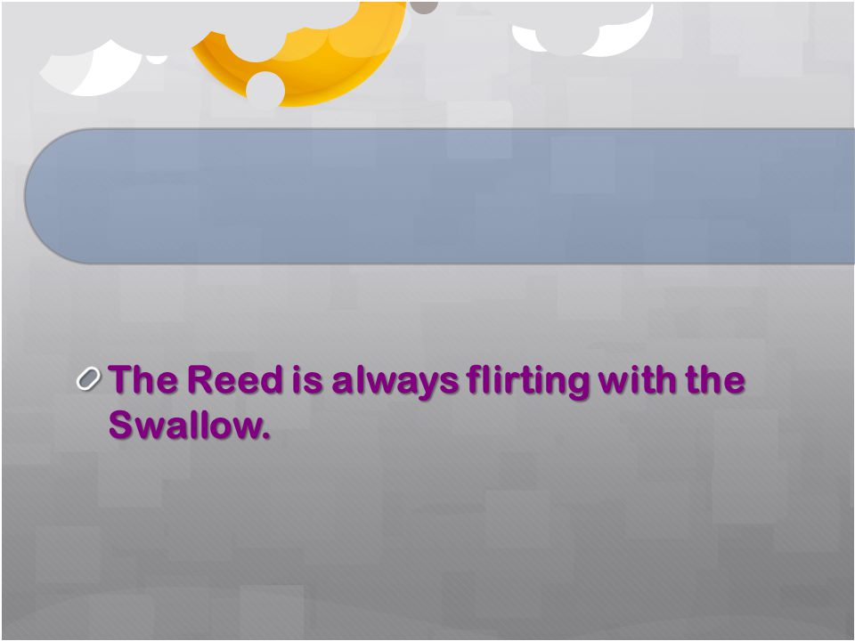 The Reed is always flirting with the Swallow.